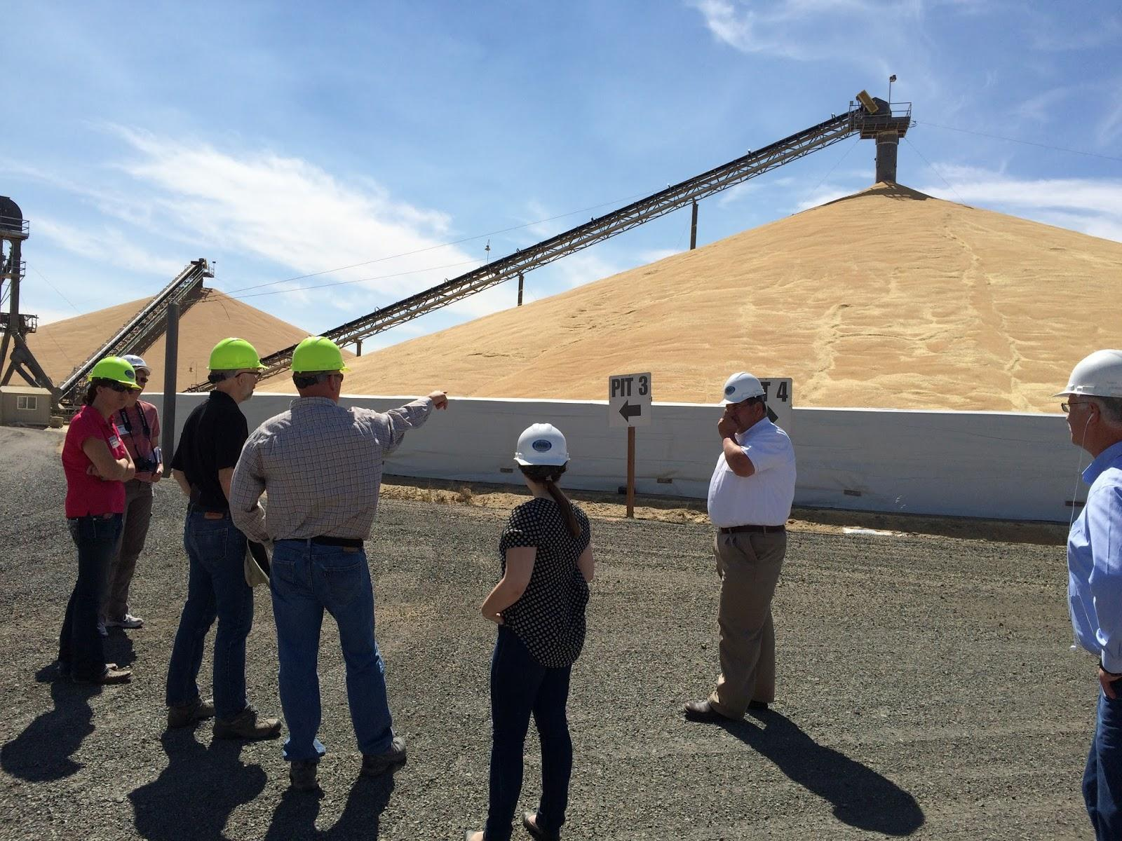 WSDA Grain Program Class Study